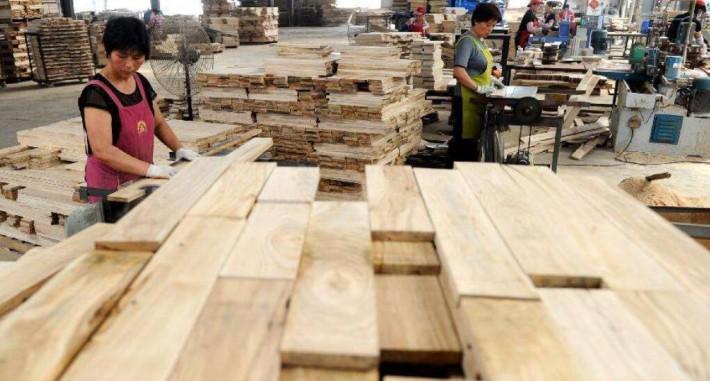 江苏丰县开展木业产业专题调研