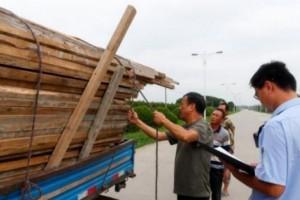 苏州汾湖全面管制并清理三和村木材市场