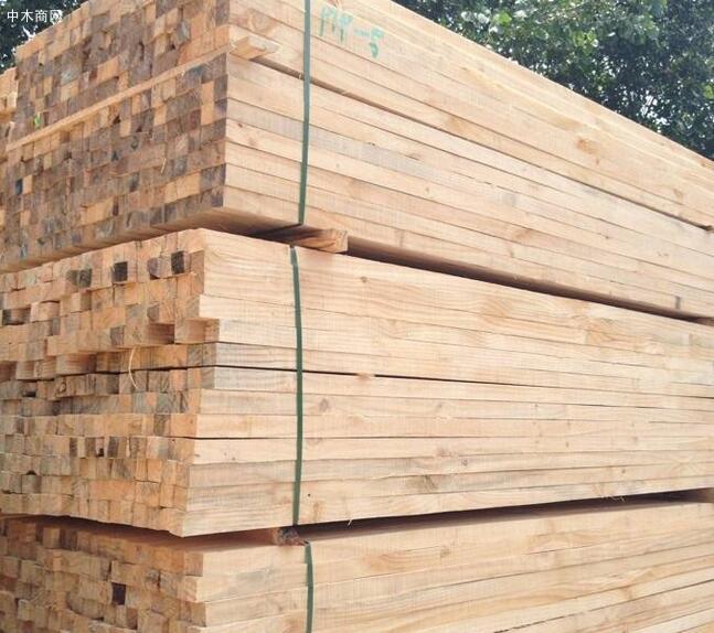 辐射松建筑木方最新报价