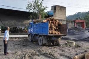 云南隆阳森林公安查获一起无证运输木材案