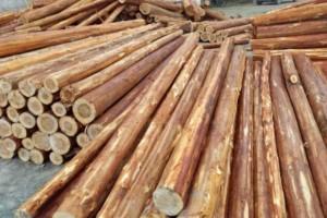 家具木材档次排名