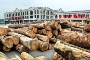 江西芦溪县查处一起无证运输木材案件