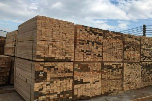 山杂木建筑木方,松木建筑木方,杉木建筑木方,杨木建筑木方