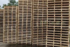 长期出售各种规格木托盘 杨木托盘