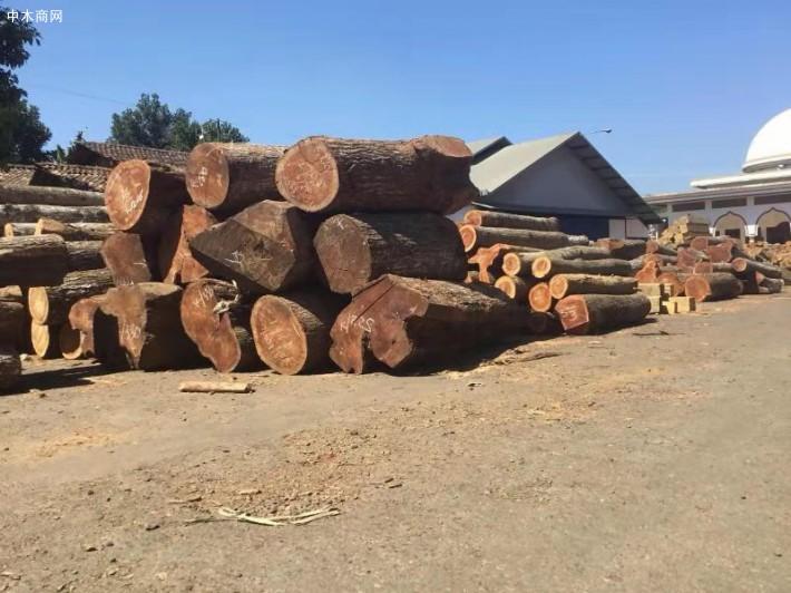 桃花芯木是红色硬木木主要用于制造高档家具