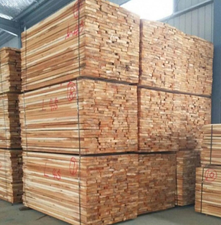 河南白杨木烘干板材厂家今日最新报价