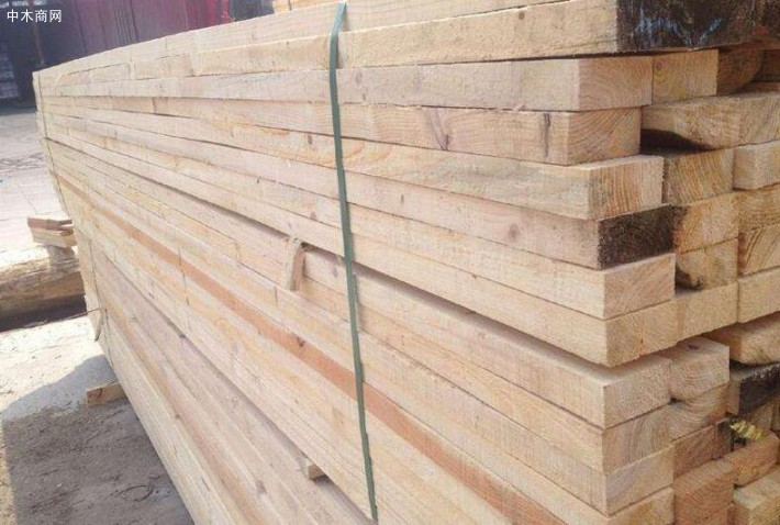 俄罗斯樟子松建筑木方厂家今日最新报价