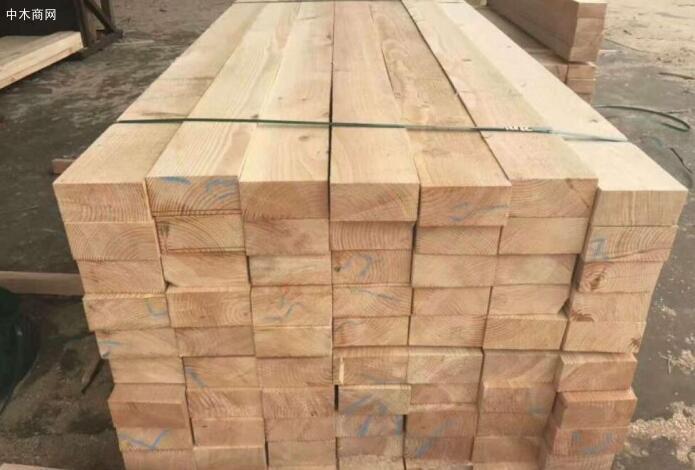 加拿大进口铁杉