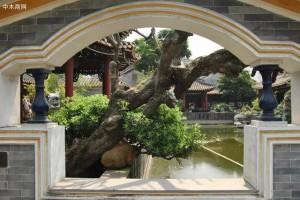 细赏广东四大名园,体味中式古典园林的精巧雅致