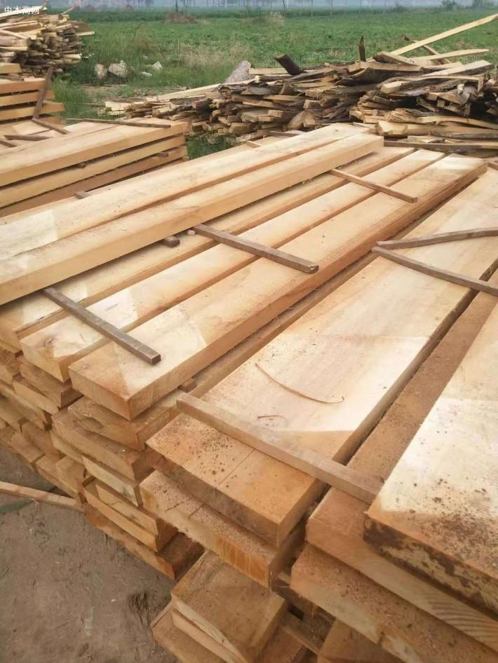 采购达人告诉你,这里河南白杨木烘干板材最便宜!