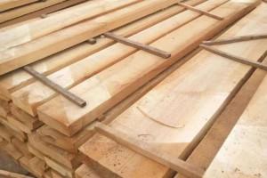 河南白杨木烘干板最新价格