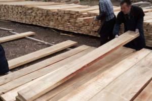 白杨木烘干板材图片