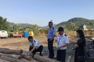 苍南查处一批林业检疫违法案件