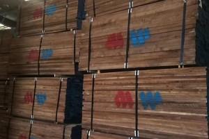 美国黑胡桃木板材现货仓库视频