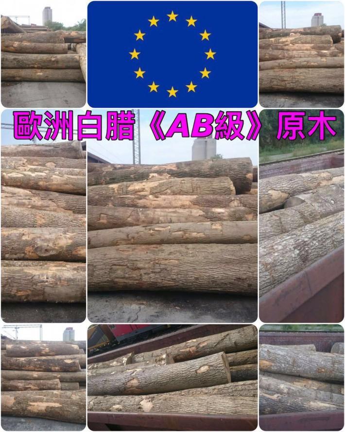 欧洲塞尔维亚白蜡木原木、南美《綠檀香》木板材