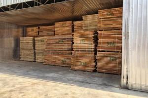 印尼桃花心木烘干板材厂家批发价格