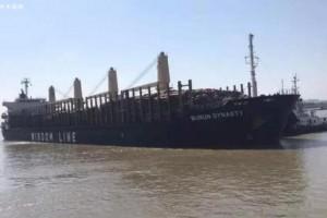 10月份新民洲港进口木材已达23.92万方
