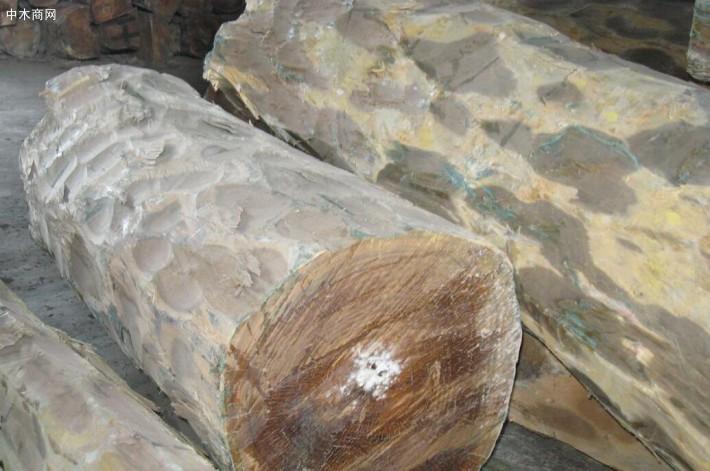 愈疮木、维蜡木是什么木?