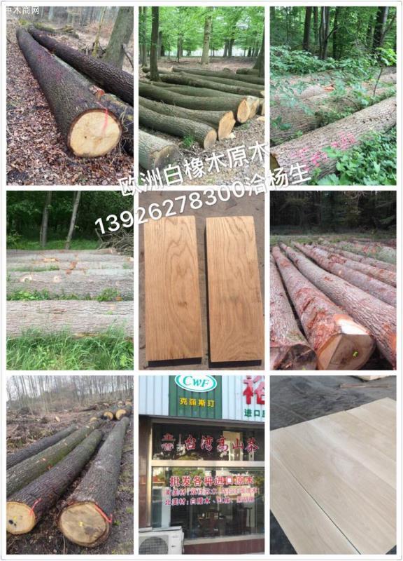 张家港保税区克丽斯玎木材贸易有限公司专业从事经销批发欧洲白橡木原木,原产地直销