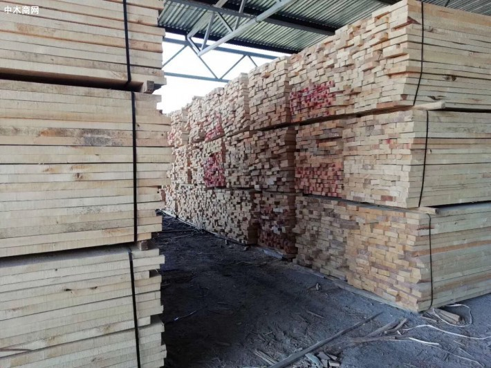 上海福人木材市场菠萝格、奥古曼等锯材价格行情