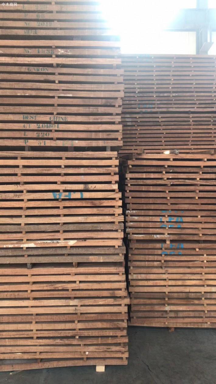 进口非洲红斑马烘干板材图片