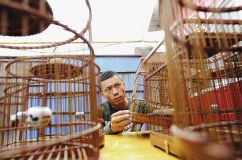 刘建华认为,红木之所以作为高档鸟笼的原材料