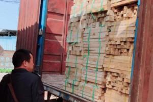 赣州大余县开展打击非法运输木材等专项行动