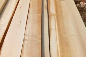 白杨木烘干刨光板材厂家批发价格