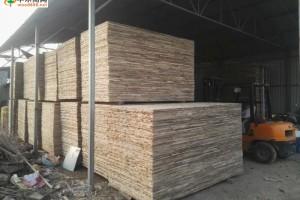 宽124.5厘米桐木生态板芯大量供应