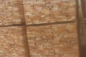 杨木实木锯材最新价格