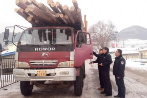 满洲里开展非法运输木材车辆大整顿行动