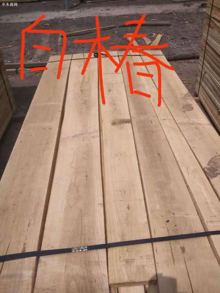其实椿木家具出虫是很麻烦的