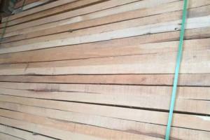 杀虫后白椿木烘干板材厂家批发价格