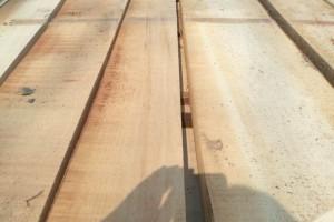 杨木烘干板材最新价格