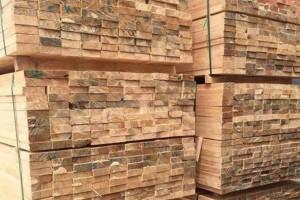 云南普洱市专项整治木材经营加工企业