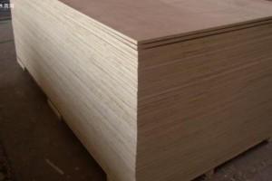 山东沂水县龙家圈街道对辖区内板材行业进行专项整治
