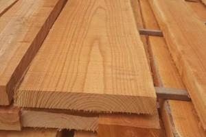 数说广西:木材产量占全国4成