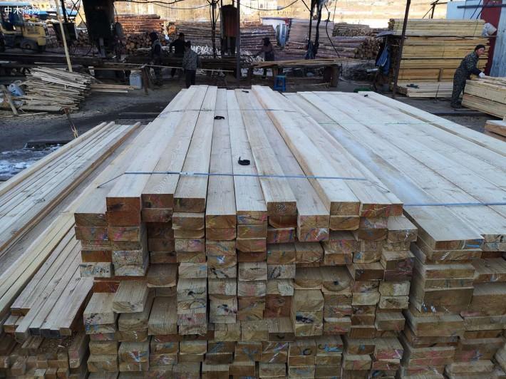 俄罗斯落叶松原木板材基本性质
