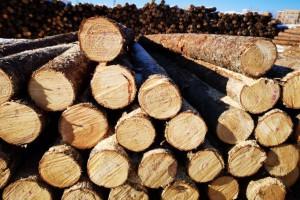 2018年前三季度累计原木进口4567.9万立方米