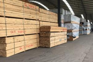 洋森木材市场A区30号《雄泰木业》专营精品:杨木,柞木,桦木