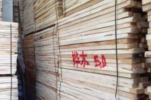 青木/桦木烘干板材长期供应