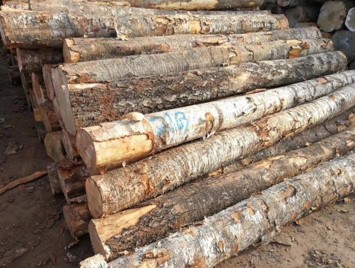 西南桦板材天生木质细腻