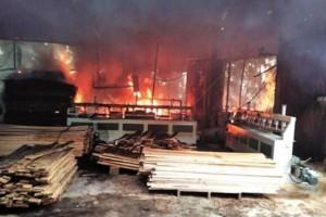 厦门一木材厂突发大火