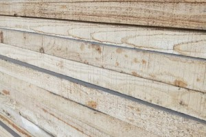 白杨木烘干板生产厂家视频