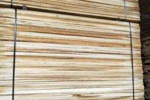 白杨木烘干板,白椿木烘干板,榆木烘干板生产厂家视频