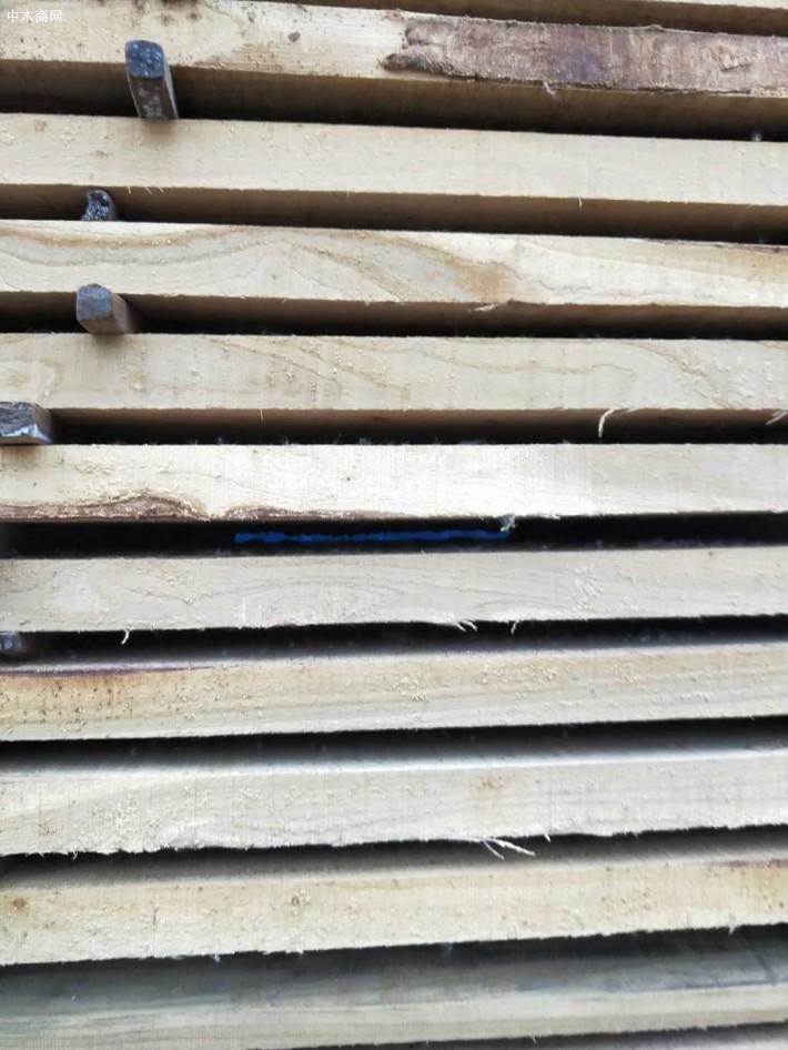榆木刨光板材今日厂家最新报价