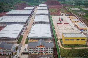 重庆永川:打造重要的西部木材产业基地