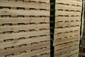 杨木托盘检测标准是什么?