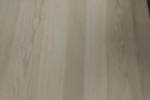 精品白椿木拼板 各种硬杂木拼板 长期大量供应