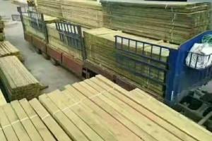俄罗斯樟子松价格 园林景观樟子松圆柱工程 上海供应商